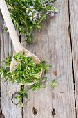 Fresh Winter Savory On A Wooden Spoon