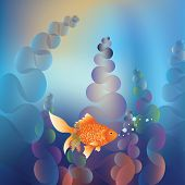 Gold Fish Underwater