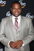 LOS ANGELES - JUL 15:  Anthony Anderson at the ABC July 2014 TCA at Beverly Hilton on July 15, 2014