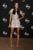LOS ANGELES - JUL 15:  Jade Catta-Preta at the ABC July 2014 TCA at Beverly Hilton on July 15, 2014