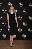 LOS ANGELES - JUL 15:  Wendi McLendon-Covey at the ABC July 2014 TCA at Beverly Hilton on July 15, 2