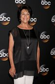 LOS ANGELES - JUL 15:  Terri Hoyos at the ABC July 2014 TCA at Beverly Hilton on July 15, 2014 in Be