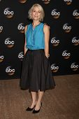 LOS ANGELES - JUL 15:  Liza Weil at the ABC July 2014 TCA at Beverly Hilton on July 15, 2014 in Beverly Hills, CA