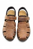 Men Brown Leather Sandals