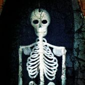 Instagram filtered style image of a skeleton