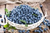 Fresh Harvested Blueberries