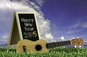 image of ukulele  - Ukulele with blue sky and Blackboard 2015 text on the grass