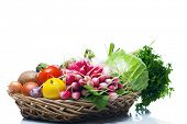 Assortment of fresh Healthy Vegetables on a White Background.