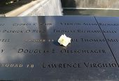 Flower left at the National 9/11 Memorial at Ground Zero in Lower Manhattan