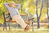 Senior gentleman sitting on bench and relaxing in park