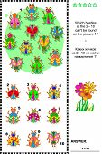 Bugs and beetles visual logic puzzle