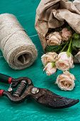 garden tool and fresh roses
