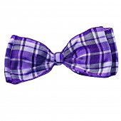 scottish  bow tie isolated on white background