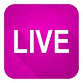 live violet flat icon, christmas button