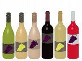 Different Kinds Of Wine Bottles 3D