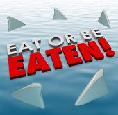 Eat or Be Eaten words on water surface with shark fins swimming around you to illustrate deadly, fierce, powerful competition in an aggressive game in busines, career or life