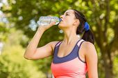 Fit brunette drinking from her water bottle in the park