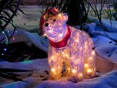 White Bear with Xmas Lights