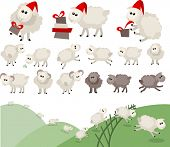 foto of counting sheep  - Sheep in santa caps - JPG