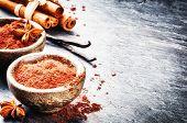 picture of cinnamon sticks  - Setting with cocoa powder vanilla and cinnamon sticks - JPG