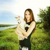 pic of husky  - Siberian Husky - JPG