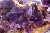 picture of violet  - violet fluorite cubes as natural mineral background - JPG