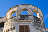 stock photo of palace  - Perspective of the Catapano Palace - JPG