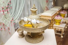 image of conch  - Conch shell for thai wedding ceremony  - JPG