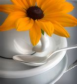 Caffee cup with flower