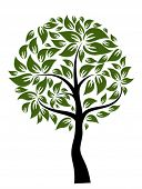 Decorative tree, vector illustration