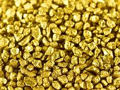 foto of gold nugget  - Gold nuggets macro - JPG