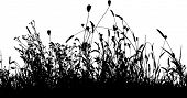 Grass meadow and plants silhouette vector