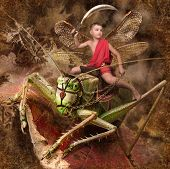 boy warrior riding on grasshoppers