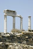 Ancient Ruins Delos