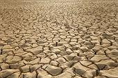 rissige Erde Muster im Zin-Tal, Arava, Israel.