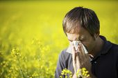 stock photo of hay fever  - Young man in yellow canola field blowing his nose and suffering from hay fever - JPG