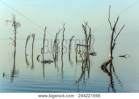 Sunrise on Lake Nakuru Kenya