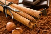 Cinnamon Sticks with Chocolate