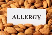 Almond Allergy (nut Allergy). Paper With Word Allergy On Almonds Background poster