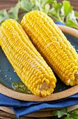 picture of zea  - cooked sweet corn - JPG