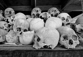 Human Skulls At The Killing Fileds