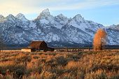 Grand Teton's iconic barn at sunset