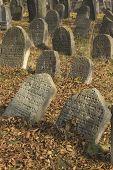 Jewish Cemetery In Libochovice (Czech Republic)