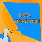 Writing Note Showing Data Encryption. Business Photo Showcasing Another Form Code That Only Showing  poster