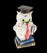 Erudite Owl With Books