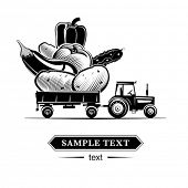 Farm tractor with vegetables. Vector illustration in the engraving style