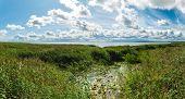 Curonian Lagoon.  Kaliningrad Region. Russia