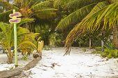 Barefoot Alley On Caye Caulker In Belize