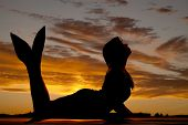 picture of mermaid  - A silhouette of a mermaid in the sunset - JPG
