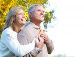 picture of elderly couple  - Happy elderly couple in love in park - JPG